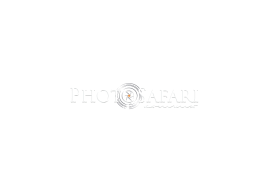 logo-photosafari_blanco