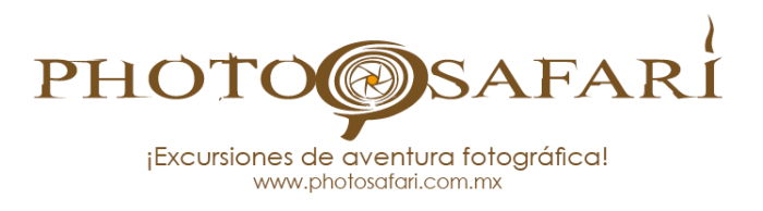 Photosafari logo 2016